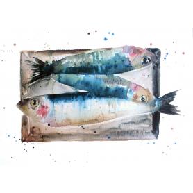 Animals Fish - Market Mackerel