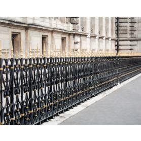 Paris In Black Railing