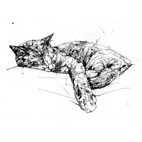 Print Ltd Edition - Animals Series - Blissful
