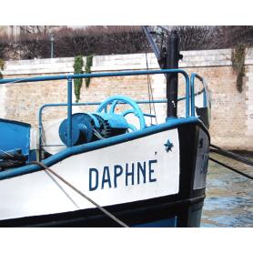 Paris In Blue Boat