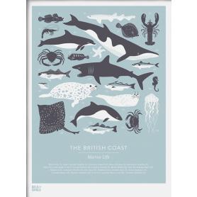 Nature - British Coast Marine in Blue