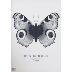 Nature - British Butterflies Peacock in Slate