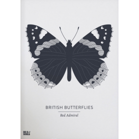 Nature - British Butterflies Red Admiral in Slate