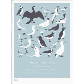 Nature - British Coast Birds in Blue