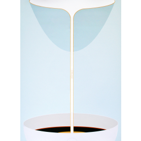 Cream Pour