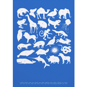 Nature - Creatures A-Z in Blue