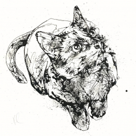 Print Ltd Edition - Animals Series - Curiosity