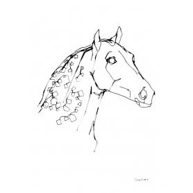 Animals Horse - Dappled Horse B&W