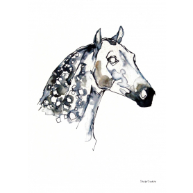 Animals Horse - Dappled Horse Colour