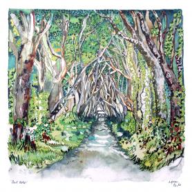 Co Antrim - The Dark Hedges