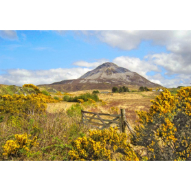 Co Donegal - Errigal from Dunlewy Donegal