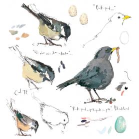 Sketchbook - Blackbird and Coal Tit