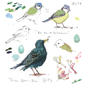 Sketchbook - Blue Tit and Starling
