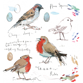 Sketchbook - Robin and House Sparrow