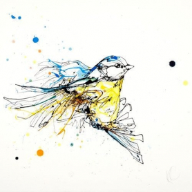 Print Ltd Edition - Animals Series - Flight