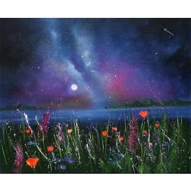 Galaxy Over Wildflowers