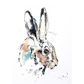 Animals Hare - Harriet