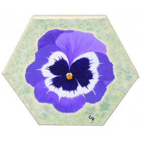 Hexagon Pansy