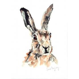 Animals Hare - Lavender