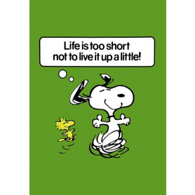 Snoopy - Life Is Too Short
