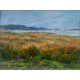 Slate Island Wetlands