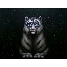 Moonlit (Snow Leopard)