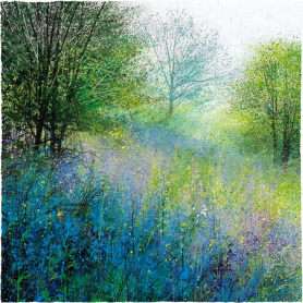 Bluebell Morning
