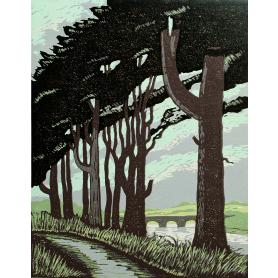 Linocut Print - Co Down Pine Trees On Murlough