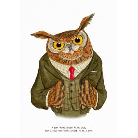 Animals - Owl Shakespeare Quote