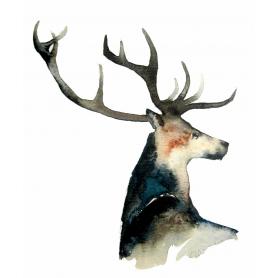 Animals Deer - Dark Stag