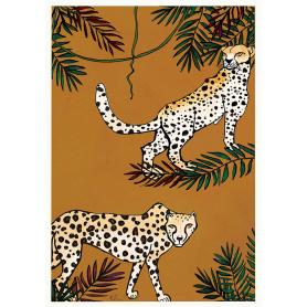 Savannah Cheetah