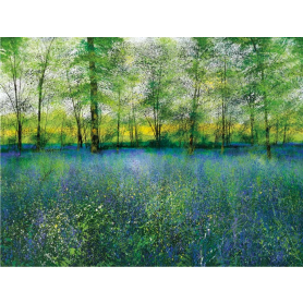 Scent Of Bluebells - Artist Proof