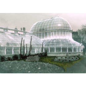 Palm House Botanic Gardens