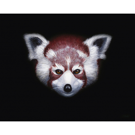 Shirley (Red Panda)