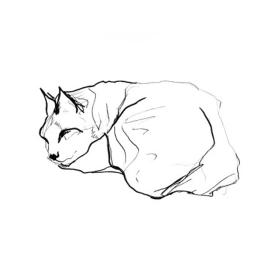 Sleeping Cat II
