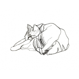 Sleeping Cat I