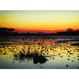 Sunset Over Greyabbey