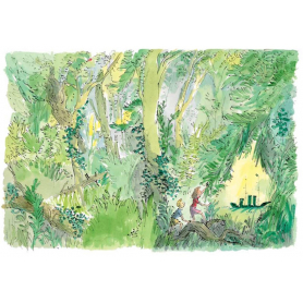 Quentin Blake Signed - The Green Ship Artist Proof