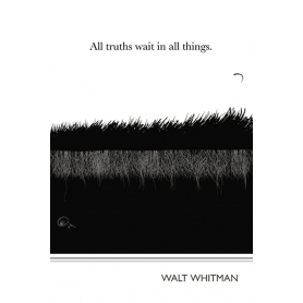 Literary Print - Walt Whitman