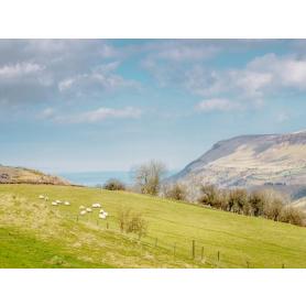 North Coast - Waterfoot from Glenariff