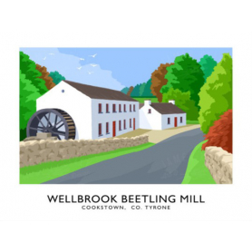 Co Tyrone - Wellbrook Beetling Mill