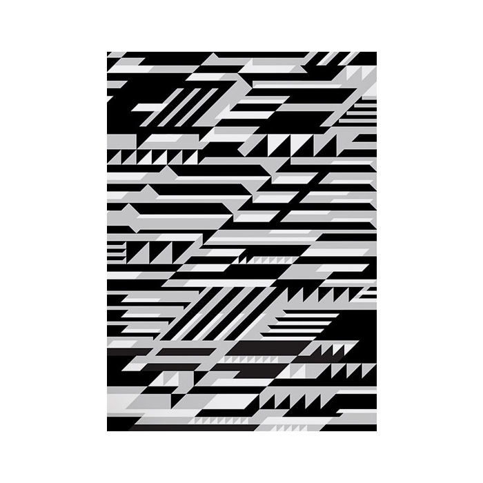 Bold and Noble | Abstract Prints | Faster In Monochrome